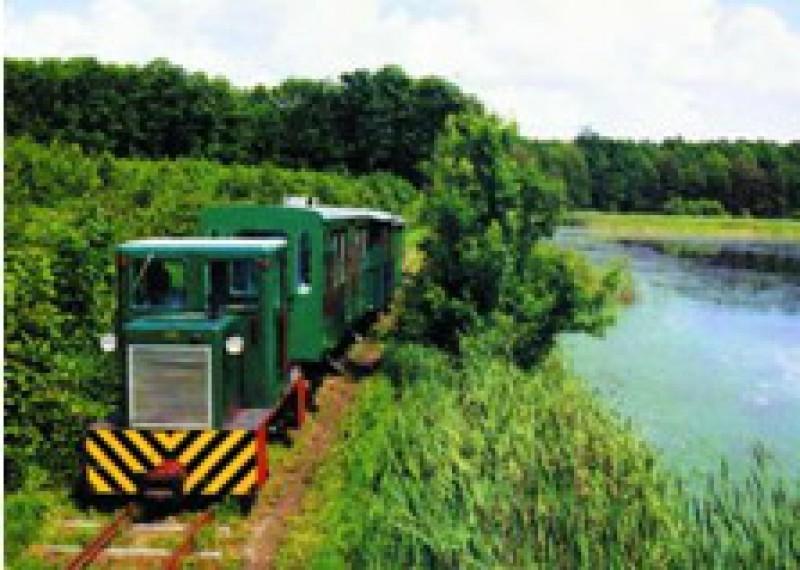 Környék - Mesztegnyő - Kis erdei vasút