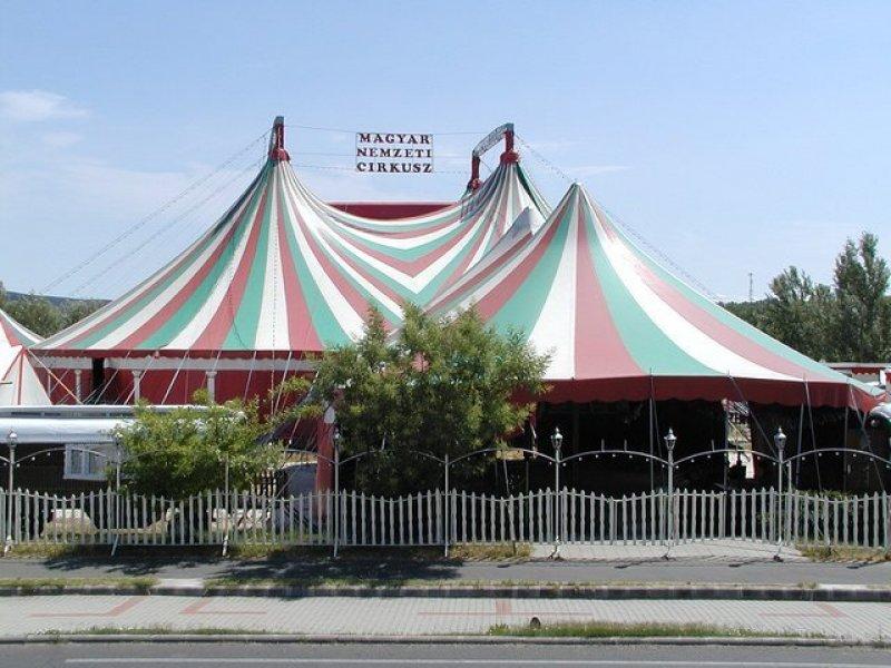 Cirkusz ,minden este műsorral.